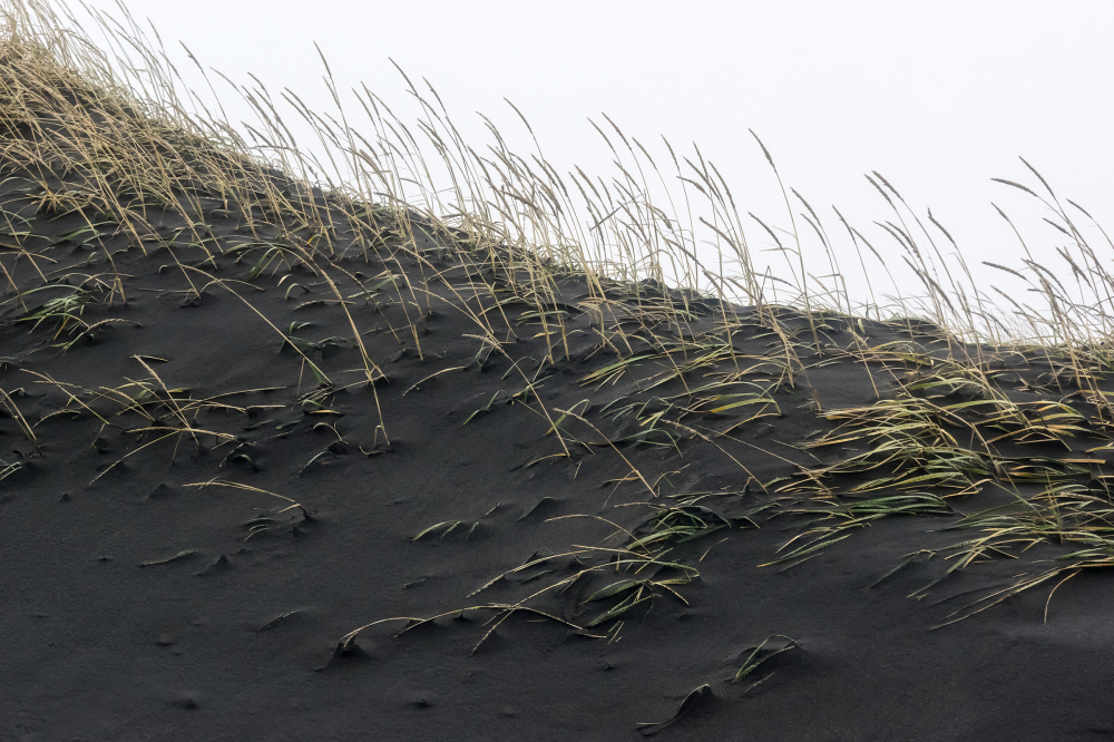 Volcanic sand 1