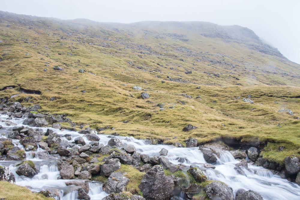Mountain stream 1