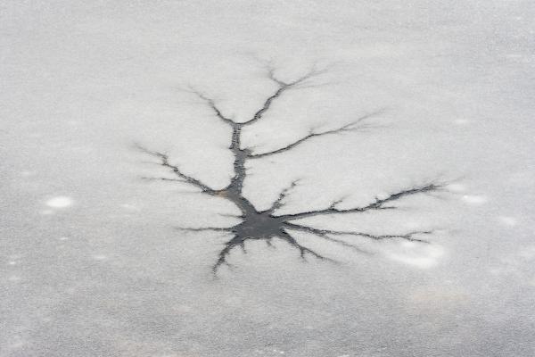 Ice neuron 6