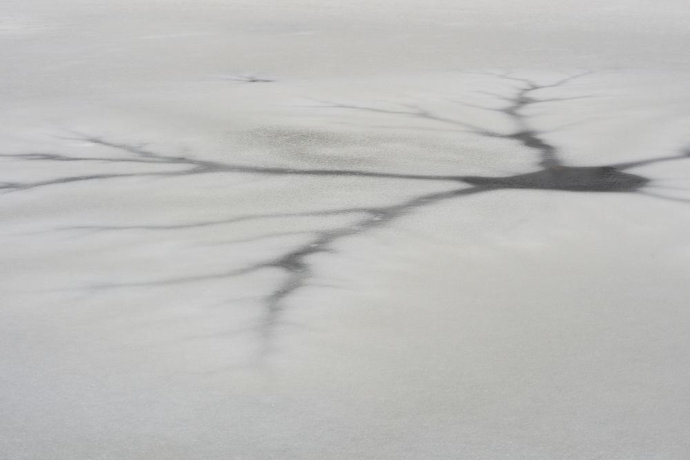 Ice neuron  5