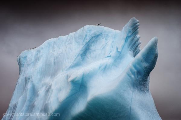Iceberg Base