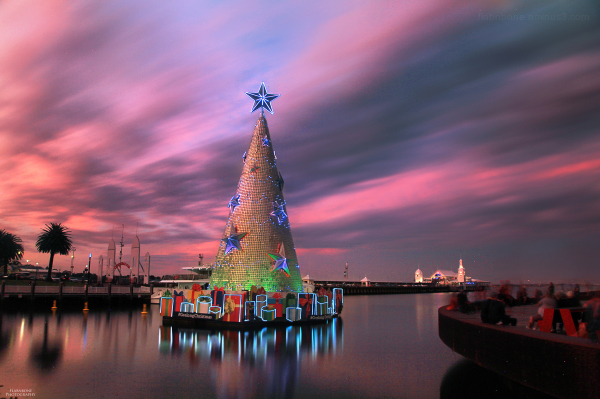 geelong australia melbourne christmas light show