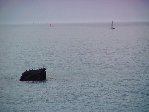 La côte bretonne #1