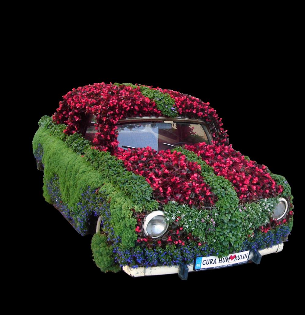 The Mobile Flower Garden