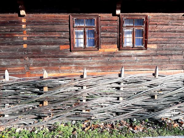 Wood Everywhere