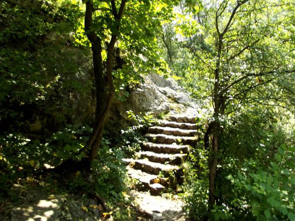 Inviting Stairs