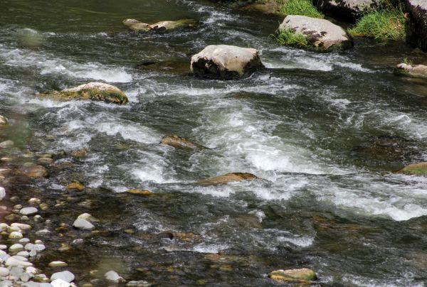 L'eau, la vie...