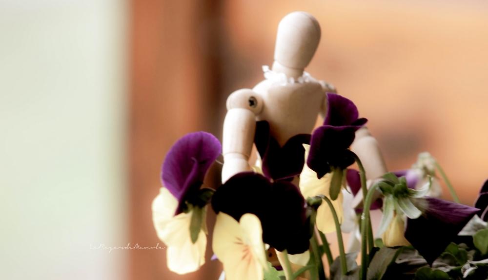 je vous offre des fleurs ...