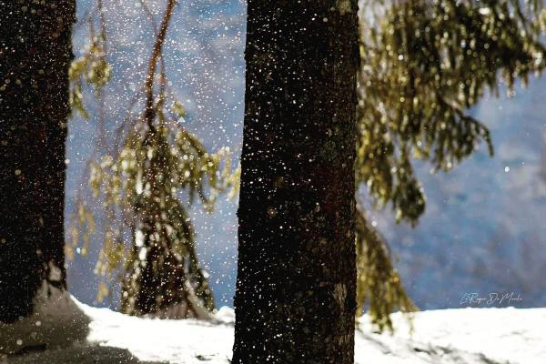 J'adore la neige....