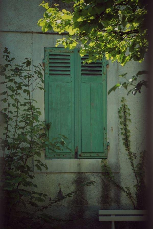 Du vert sur les murs