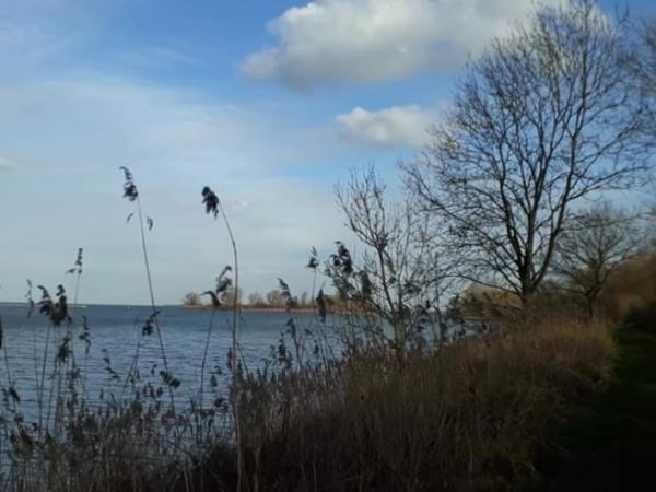 Diemervijfhoek view at the lake