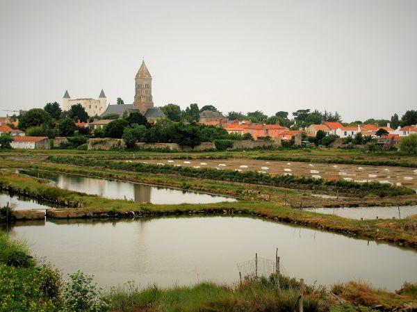 France Nature Salt Noirmoutier