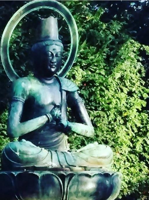 Feeling Zen