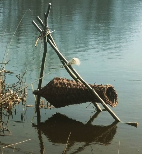 Duck hive