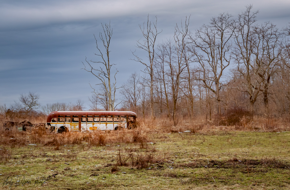 The Last Bus Stop
