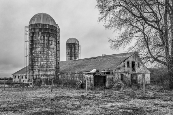 Old Barn And Silos