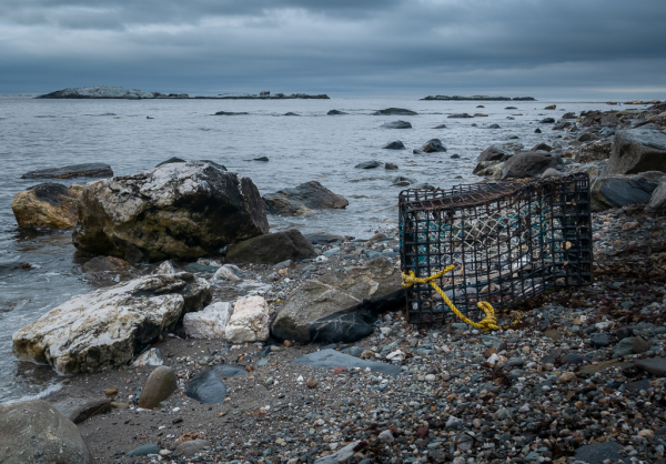Lobster Trap On Shore