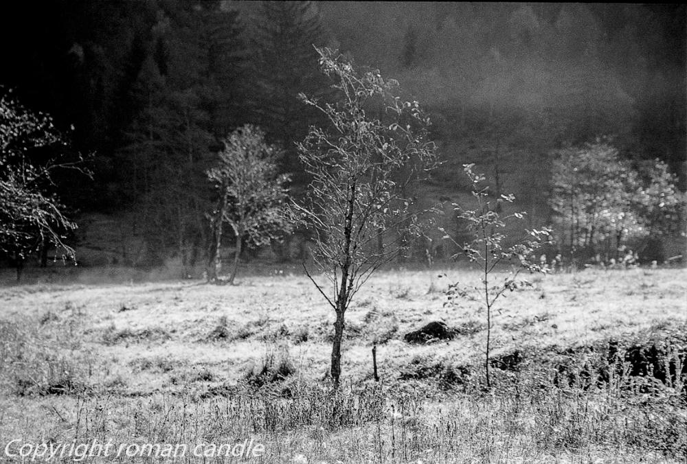 ...autumn silence...