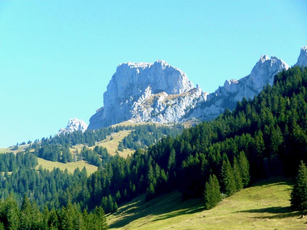 Dent de Savigny 2252 m.