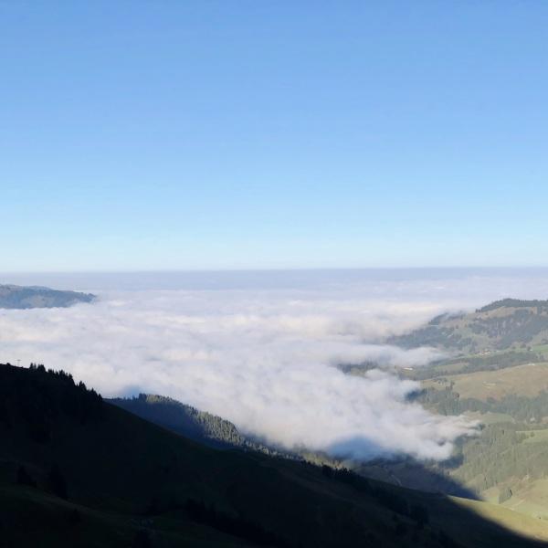 Brouillard sur la plaine