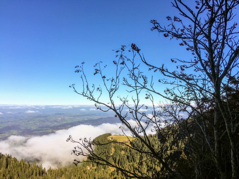 Balade au-dessus du brouillard