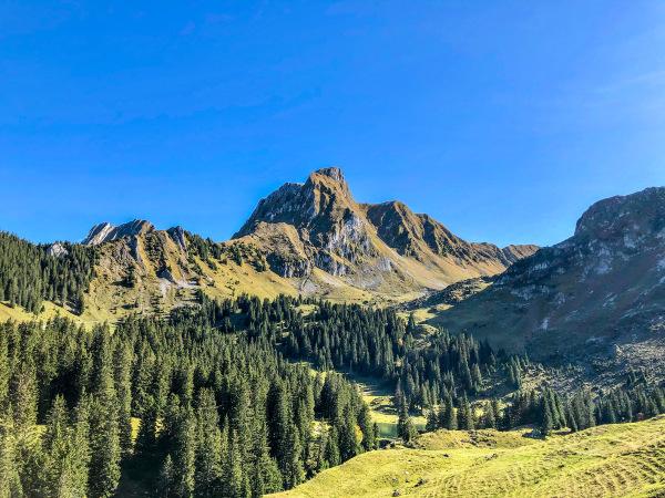Le Gantrisch 2175 m.