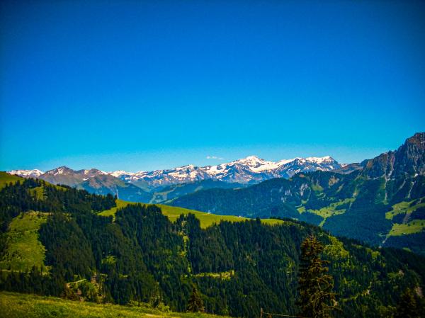 Vue sur les Alpes Bernoises