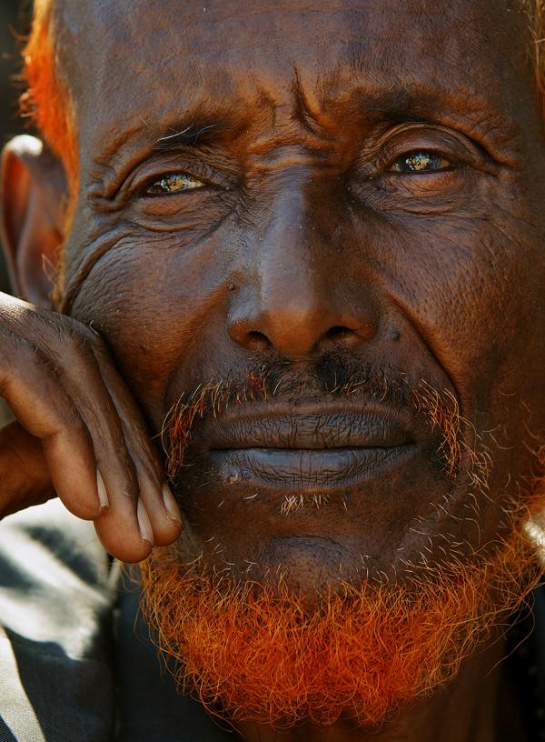 Somali Camel Trader