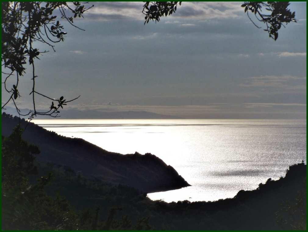 Zilarrezko itsasoa // Silvery Basque Coastline