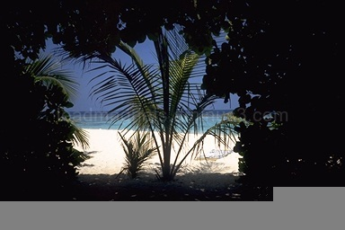 View from bungalow, Ellaidhoo, Maldives, 1993