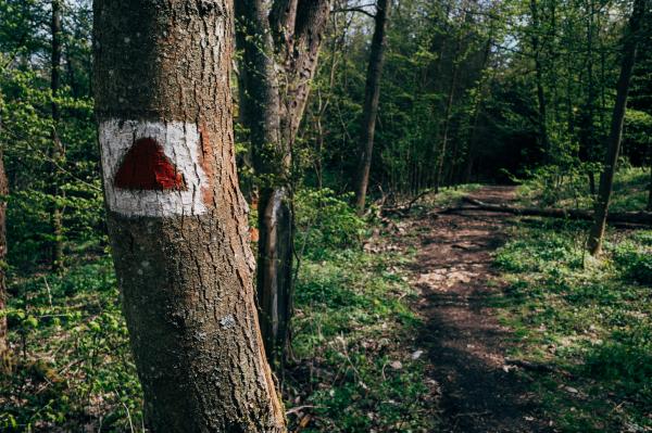 Tourist Path Markings