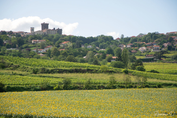 Châteaugay 63